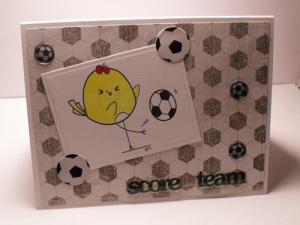 2 cute ink soccer bird 001